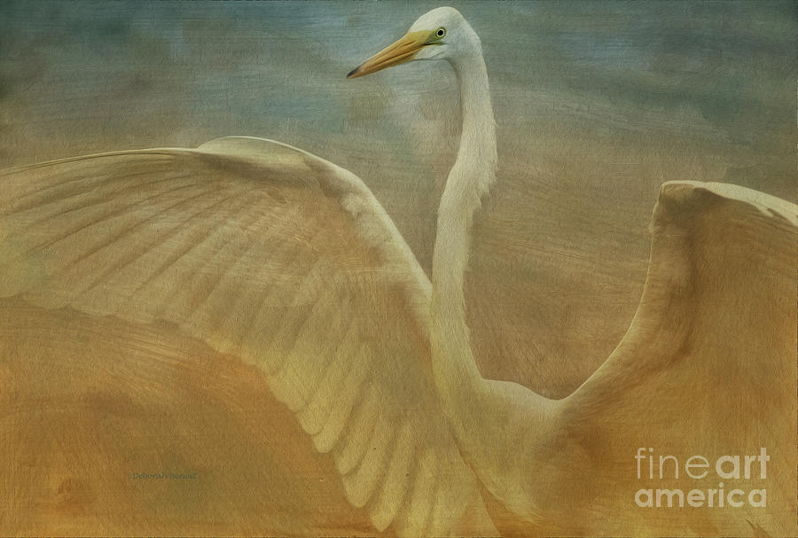 Egret Photograph - The Giant E by Deborah Benoit