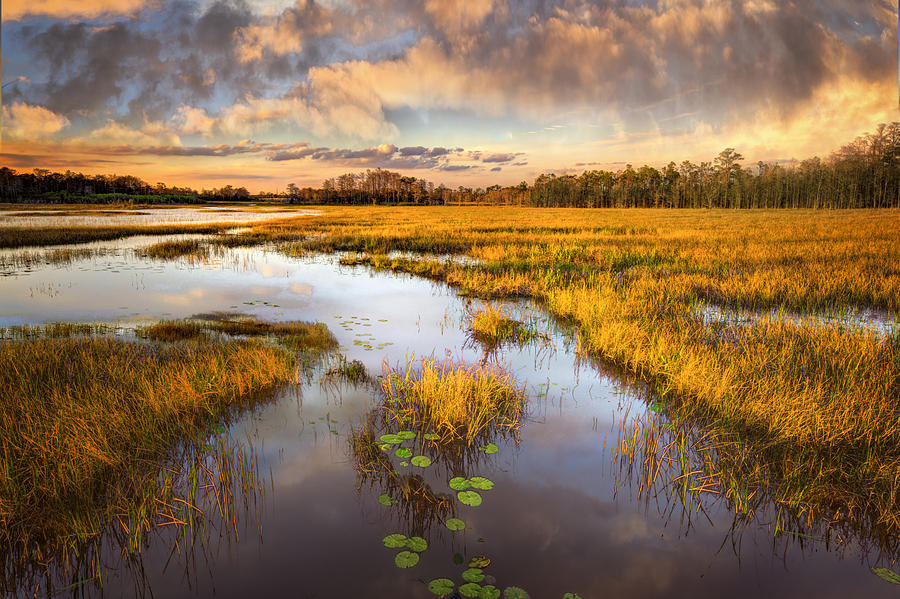 Clouds Photograph - The Glades At Sunset by Debra and Dave Vanderlaan