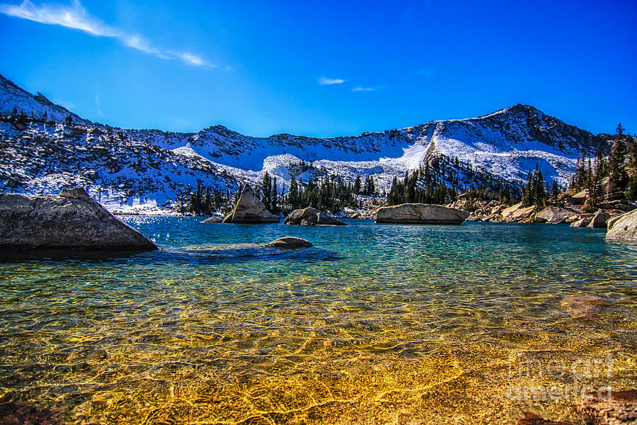 Utah Usa Photograph - The Gold Lake Bottom by Mitch Johanson