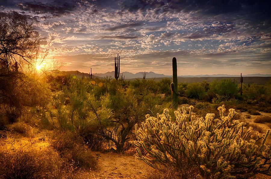 Sunset Photograph - The Golden Southwest  by Saija  Lehtonen