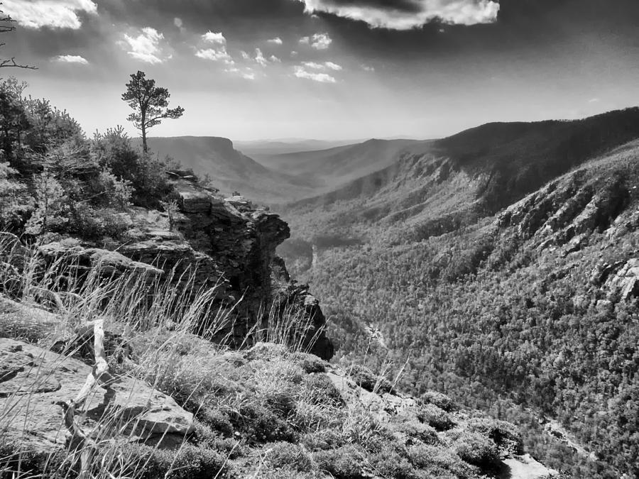 The Gorge Light by Mark Steven Houser