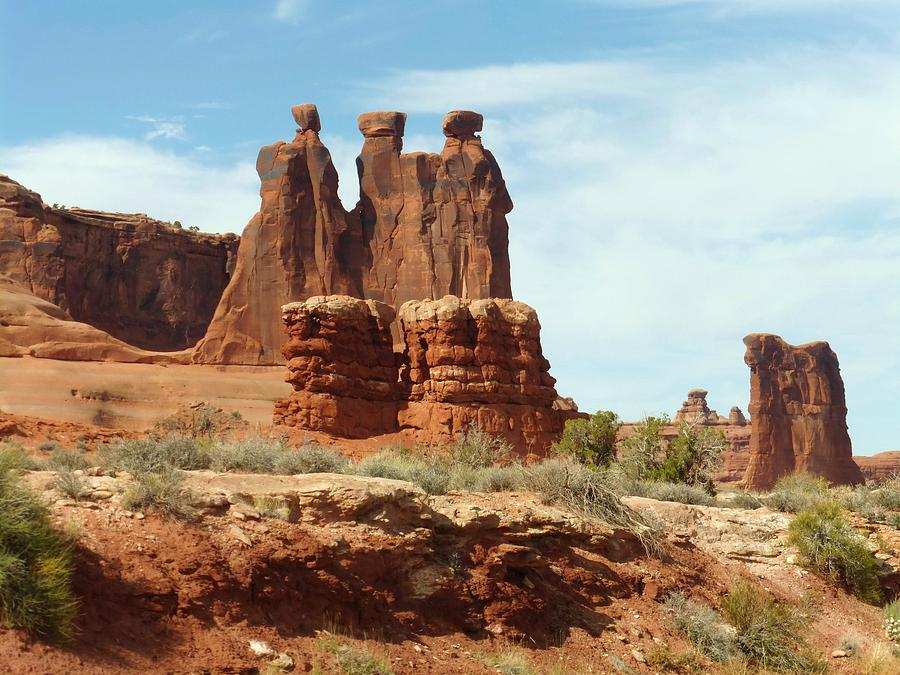 Landscapes Photograph - The Gossips by Susan Rolle