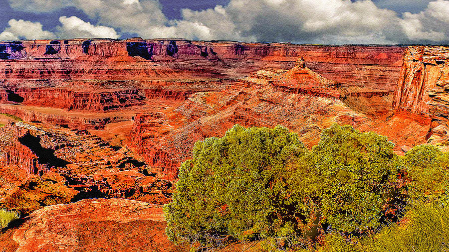Grand Canyon Photograph - The Grand Canyon Dead Horse Point by Bob and Nadine Johnston