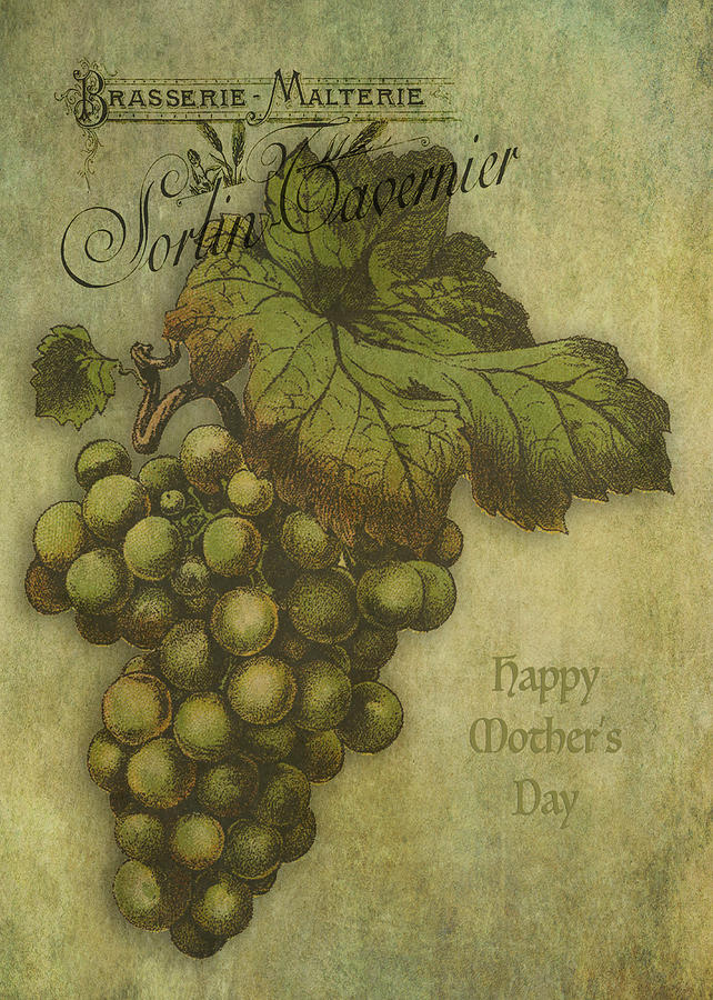 Grapes Digital Art - The Grapes of Worth by Sarah Vernon