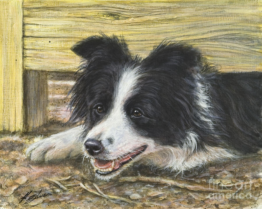 Border Collie Painting Painting - The Great Escape by John Silver