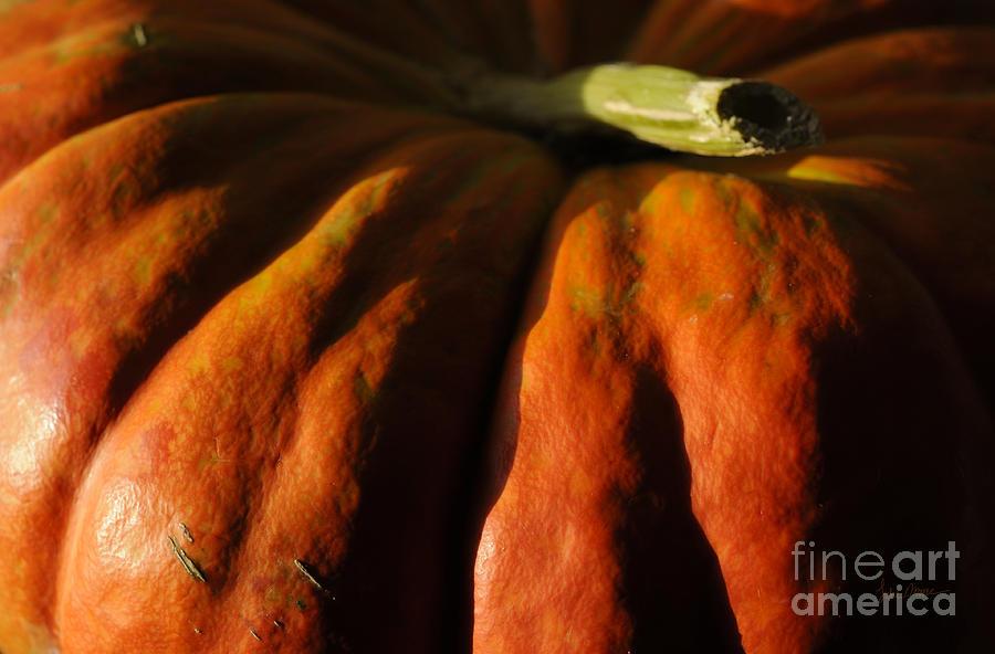Pumpkin Photograph - The Great Pumpkin by Luke Moore