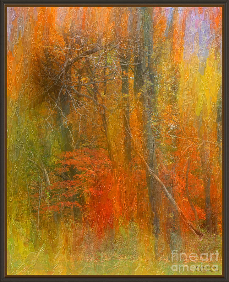 The Great Swamp by Bobbie Turner