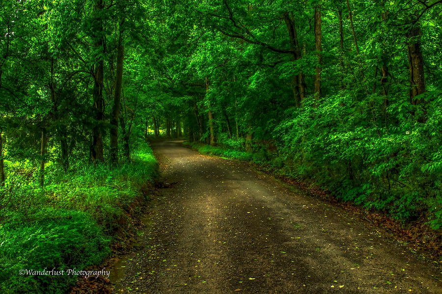 Dirt Road Photograph - The Green Mile by Paul Herrmann