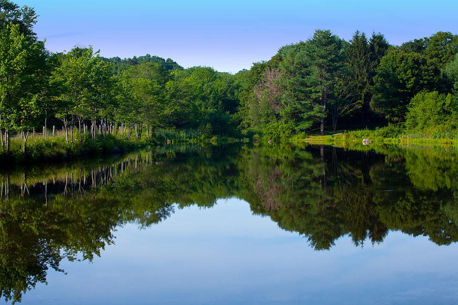 Reflection Photograph - The Greens Of Summer by Karol Livote
