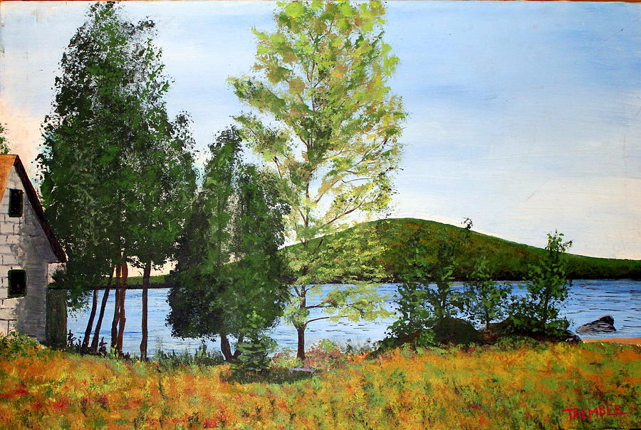 Maine Painting - The Grey Camp Beech Hill Pond by William Tremble