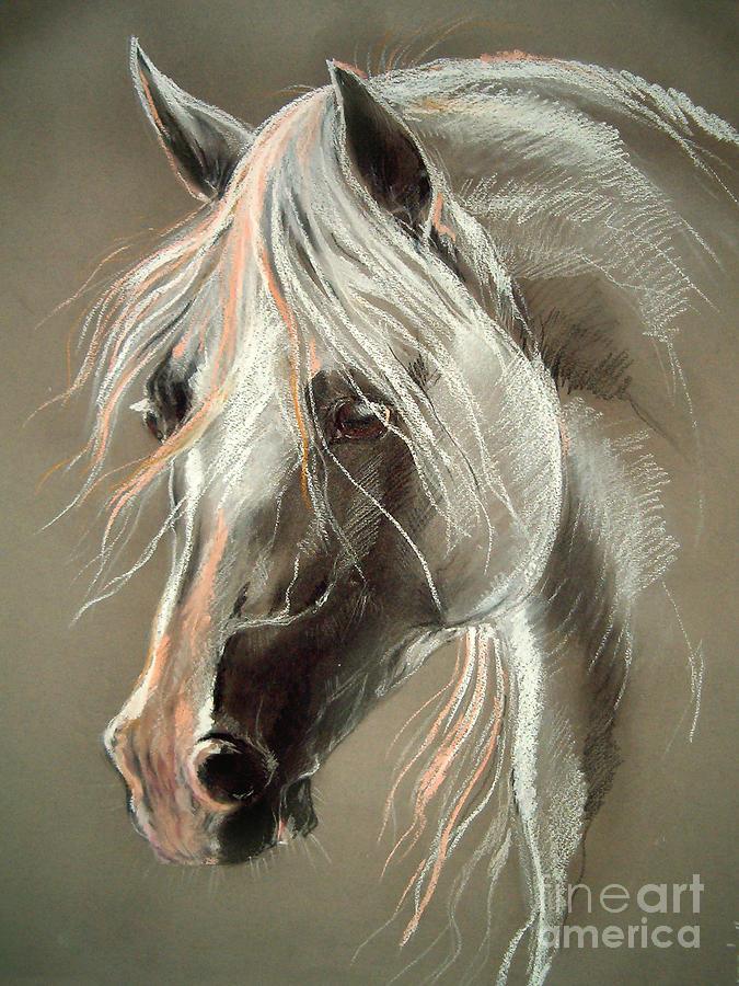 Pastel Drawing - The Grey Horse Soft Pastel by Angel  Tarantella