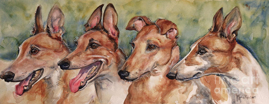 Pet Portraits Painting - The Greyhounds by Maria Reichert