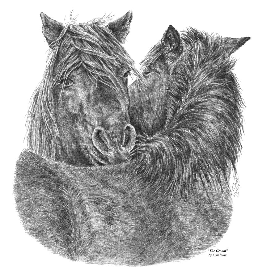 The Groom - Chincoteague Pony Print by Kelli Swan