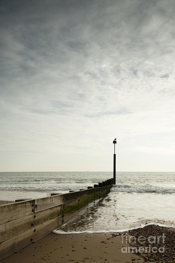 Autumn Photograph - The Groyne by Anne Gilbert