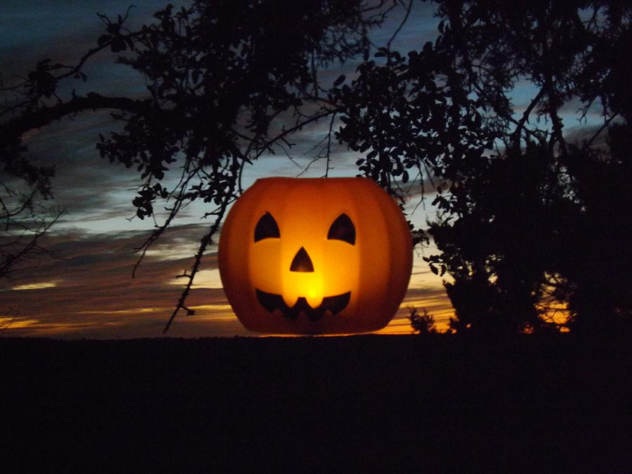 A Hanging Pumpkin At Sunset On 10/17/13 Photograph - The Hanging Pumpkin by Rebecca Cearley