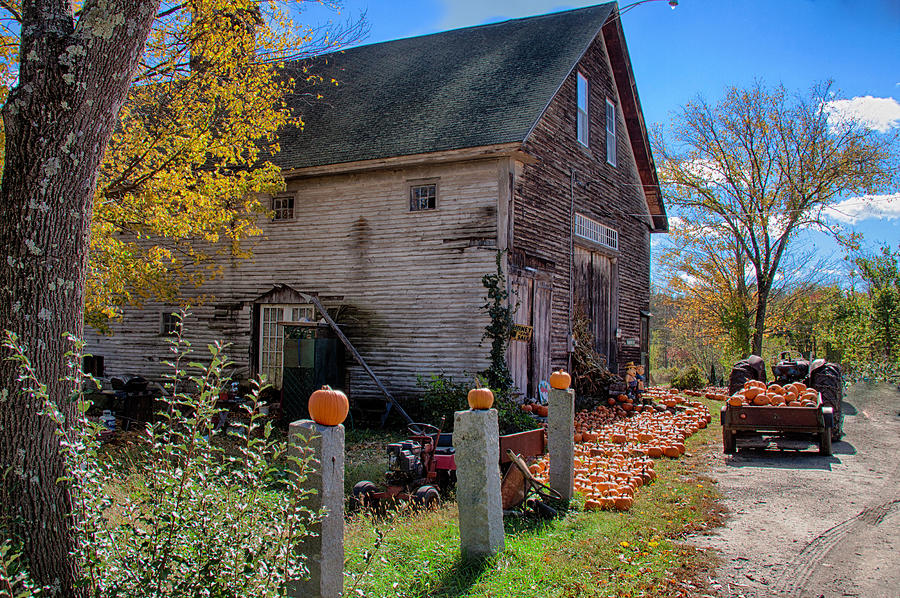 Autumn Foliage Photograph - The Harvest Is In by Jeff Folger