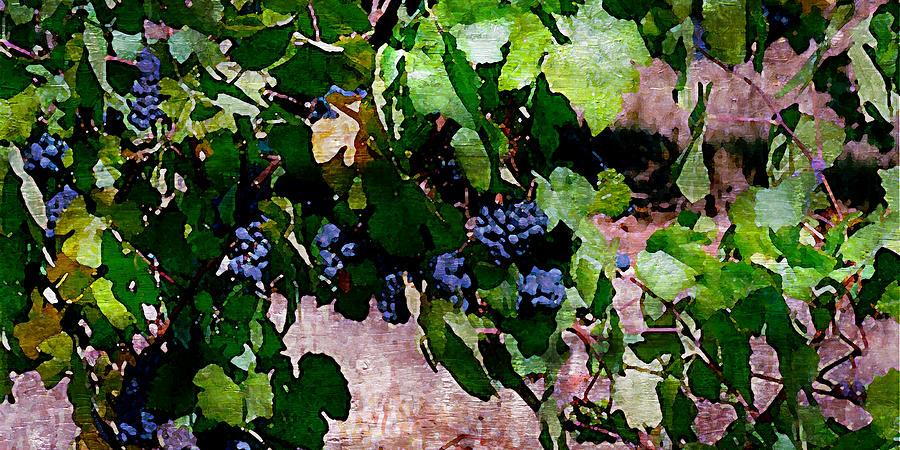 Wine Grapes Digital Art - The Harvest Line I by Ken Evans