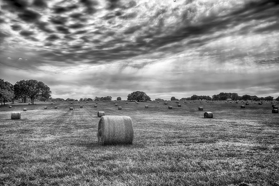Hay Photograph - The Hay Bails by Howard Salmon