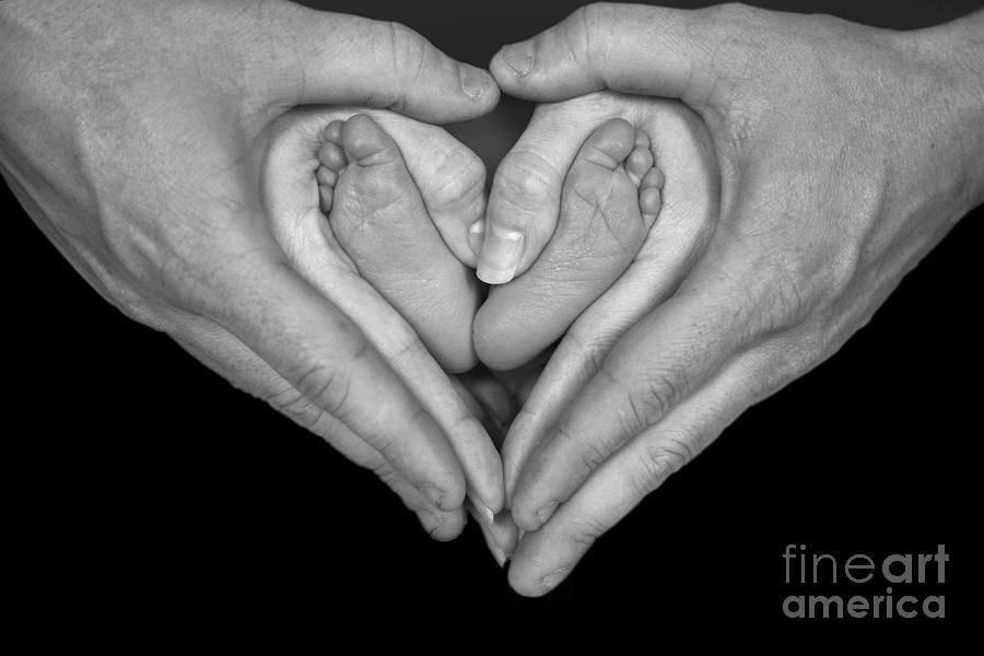 Hands Photograph - The Heart by Larry Braun