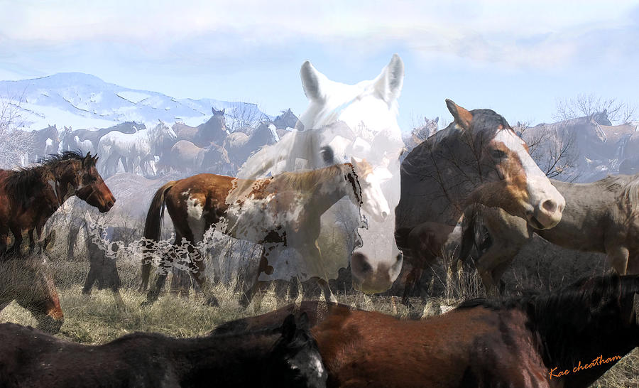 Horses Photograph - The Herd 2 by Kae Cheatham