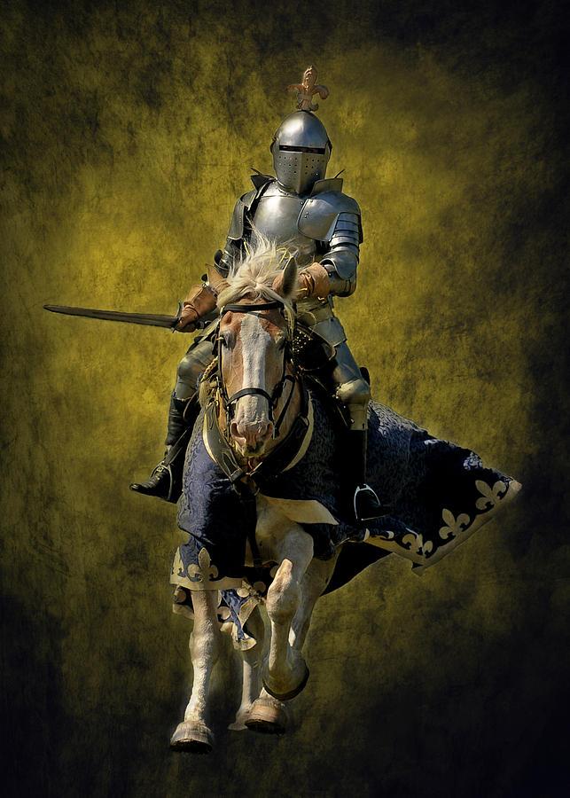 Knight Photograph - The Hero by Liz Mackney