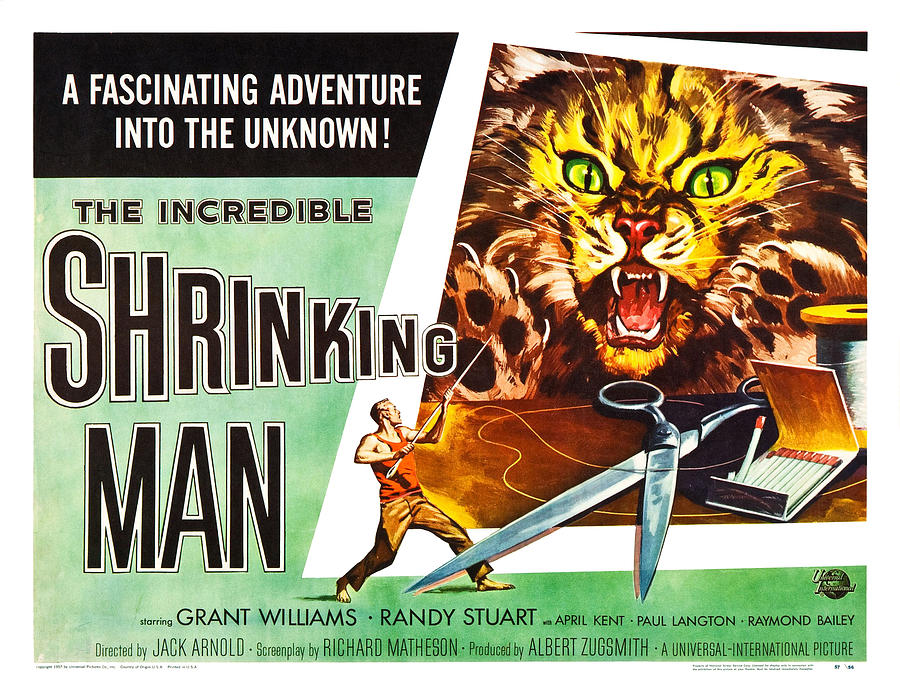 The Incredible Shrinking Man Poster Photograph by Gianfranco Weiss