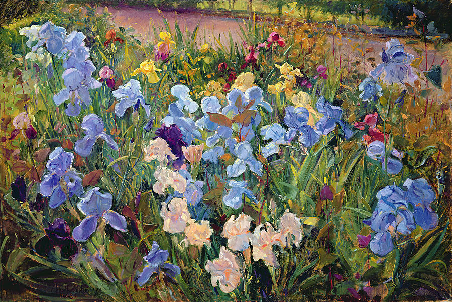 Garden Painting - The Iris Bed by Timothy Easton