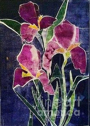 Orchards Relief - The Iris Melody by Sherry Harradence