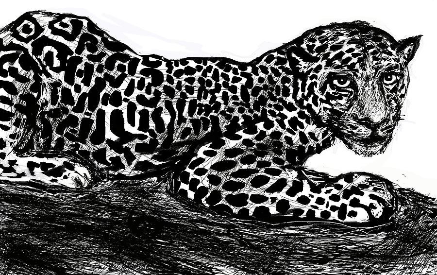 The Jaguar  by Paul Sutcliffe