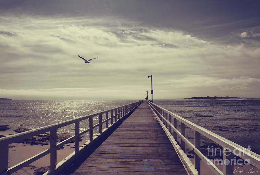 Pier Photograph - The Jetty by Linda Lees