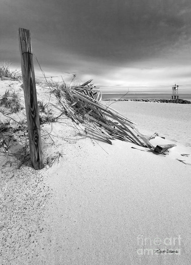 The Jetty Photograph - The Jetty by Michelle Wiarda