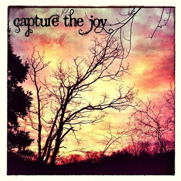 Winter Photograph - The Joy Of A Beautiful Sunrise. Great by Teresa Mucha
