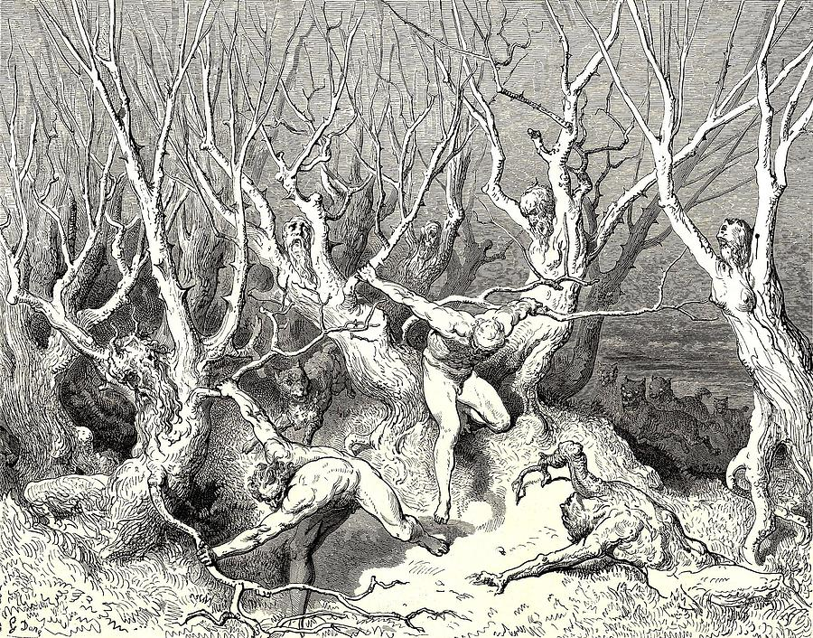 The Killing Trees From Dantes Inferno