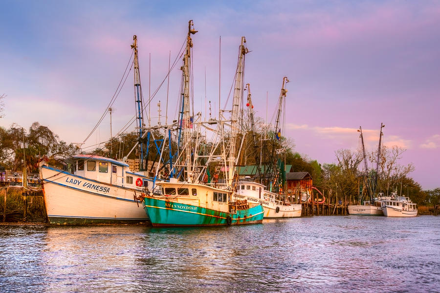 Boats Photograph - The Lady Vanessa by Debra and Dave Vanderlaan