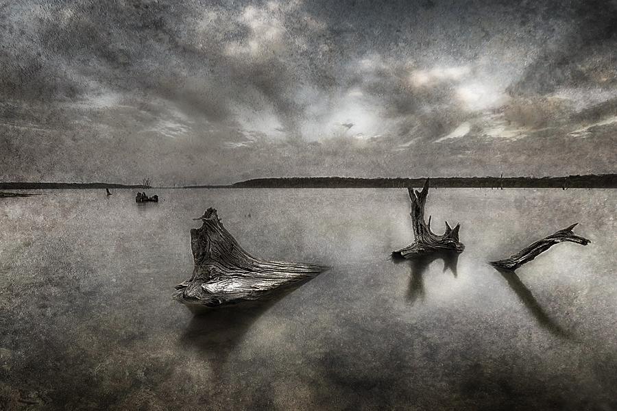 Lake Photograph - The Lake by Garett Gabriel