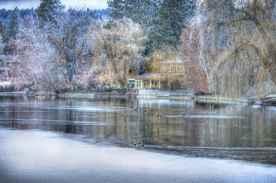 Trees Reflect In The Deschutes River Photograph - The Landing by Nichon Thorstrom