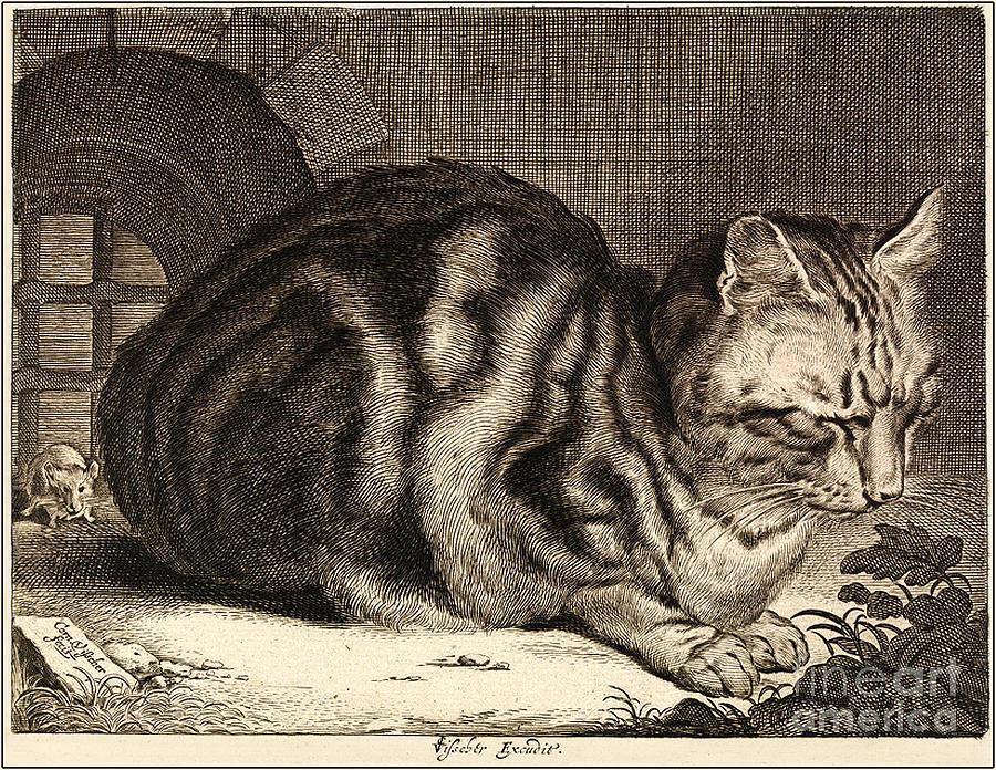 Cat Painting - The Large Cat  by Cornelis de Visscher