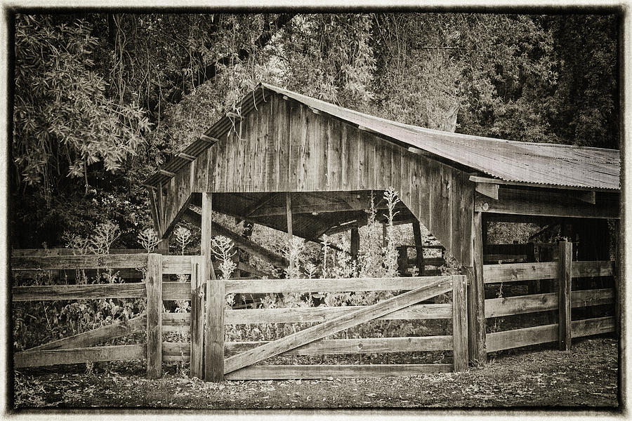 Antique Photograph - The Last Barn by Joan Carroll