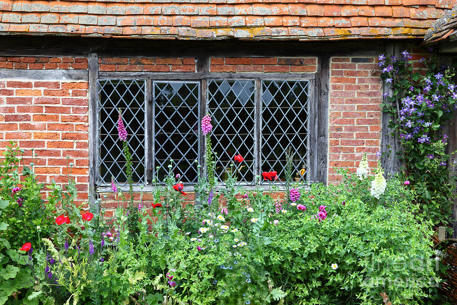 the lattice window photograph by james brunker