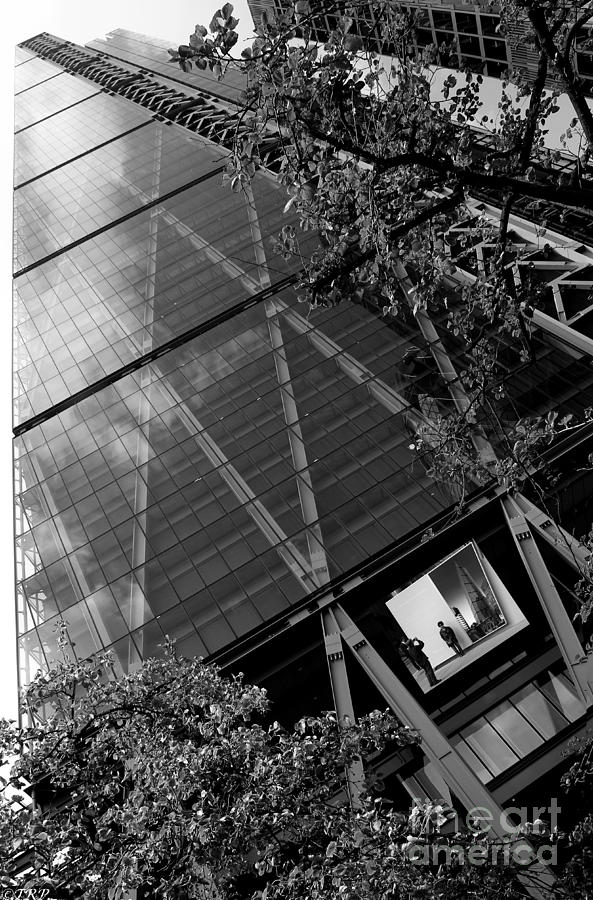 Architecture Photograph - The Leadenhall Building by Size X