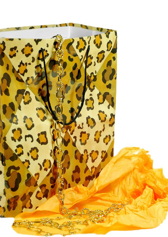 Gift Bag Photograph - The Leopard Gift Bag by Diana Angstadt