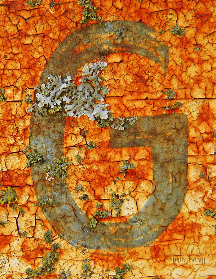 Rust Photograph - The Letter G With Lichens by Chris Berry