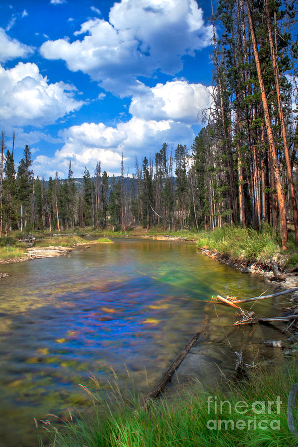 Rocky Mountains Photograph - The Little Redfish Creek by Robert Bales