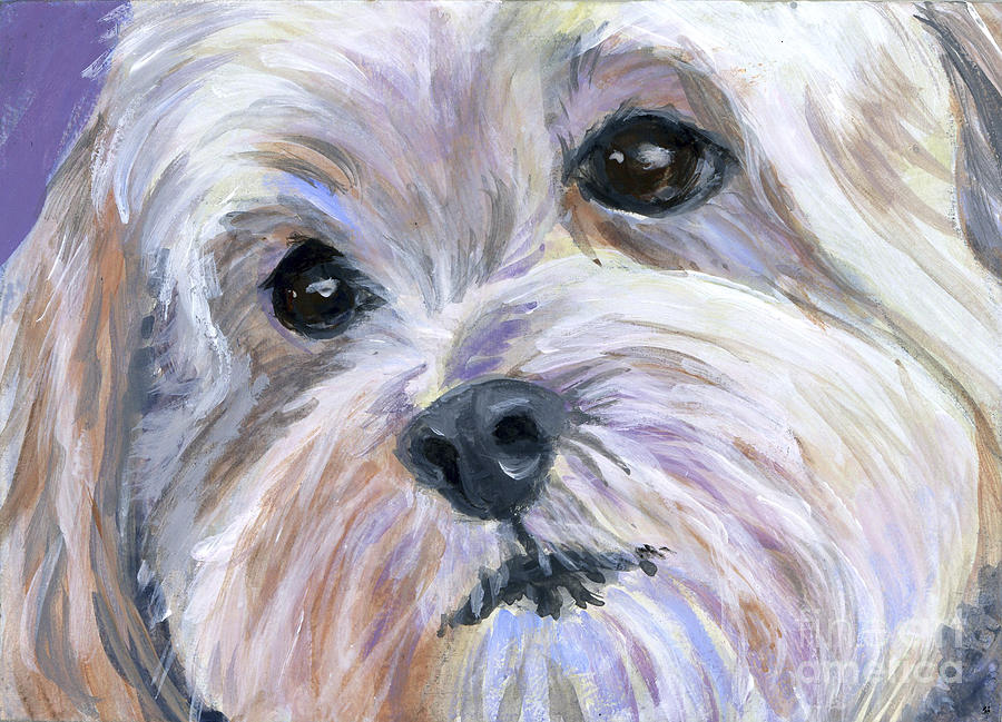 Maltese Painting - The Little White Dog by Hope Lane