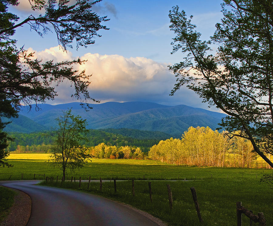 Mountains Photograph - The Long And Winding Road by Dave Bosse