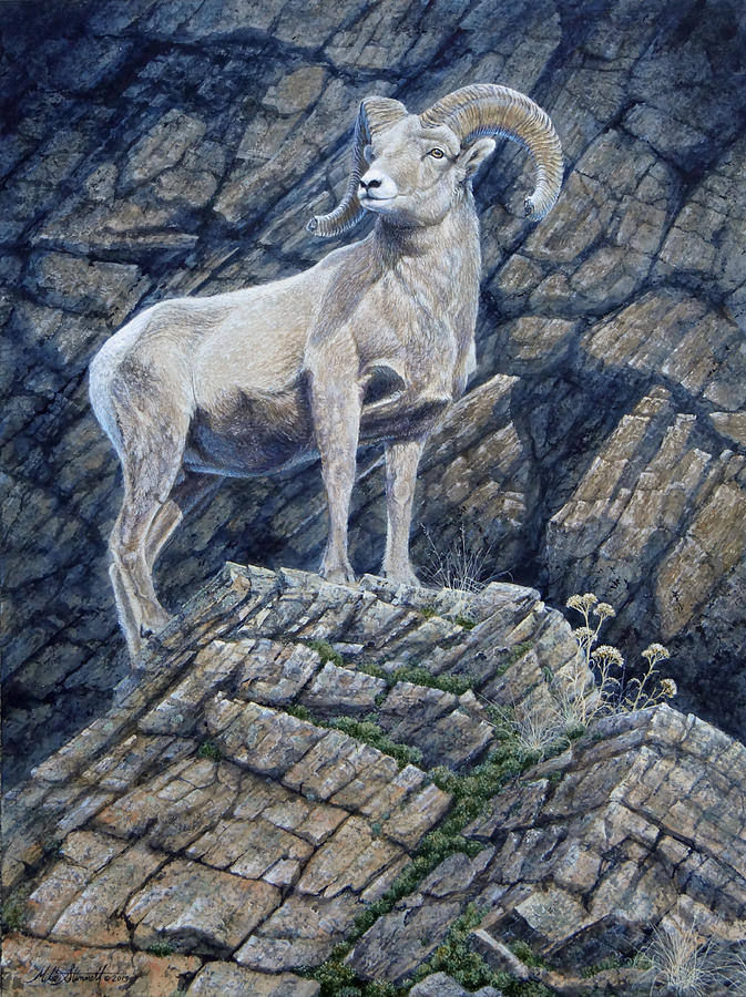 Ram Painting - The Look Out by Mike Stinnett