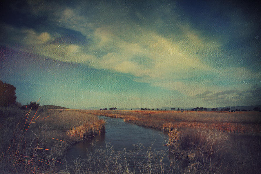 Landscapes Photograph - The Love We Give by Laurie Search