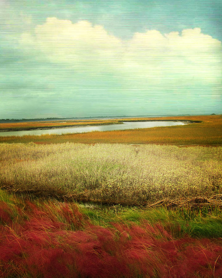 Landscape Photograph - The Low Country by Amy Tyler