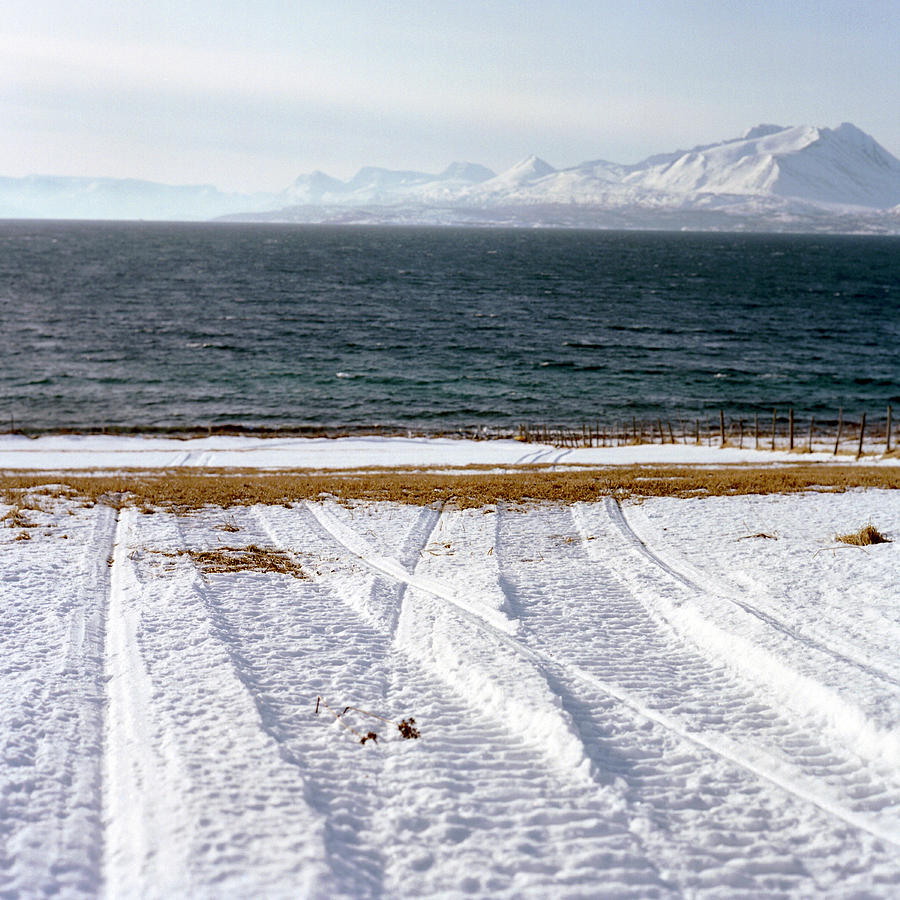 Coast Photograph - The Lyngen Alps And Snowmobile Tracks by Kari Medig
