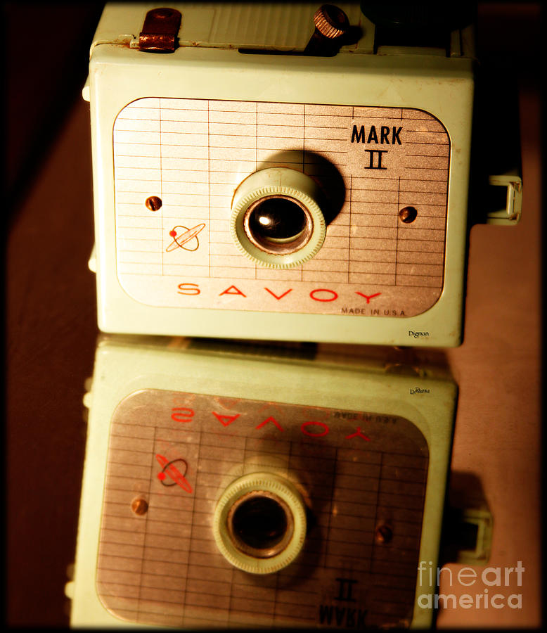 Camera Photograph - The Magic Lantern  by Steven Digman